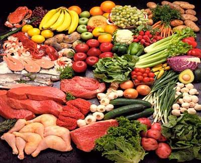 Paleo plan foods